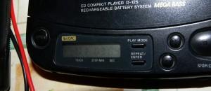 P1130072 b